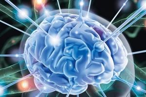 Помогает ли спорт формированию новых нейронов?