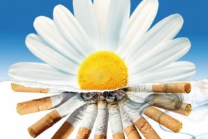 Курение разрушает жизненно важные органы
