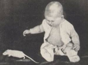 Эксперименты в психологии: крошка Альберт