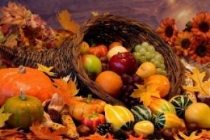 Что Библия предписывает в пищу для человека?