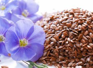О пользе льняных семян
