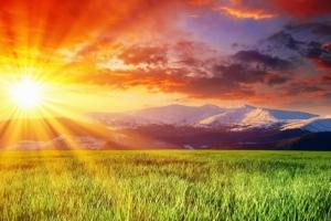 Преимущество солнечного света и витамин D