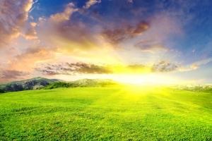 О важности света и воздуха