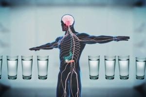 Вода необходима для организма человека