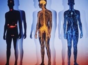 Витамины и их значение для нашего здоровья