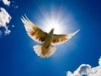 Обращение церкви АСД ко всем людям доброй воли по вопросу о мире