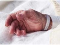 Общее заявление АСД по проблеме заботы об умерших
