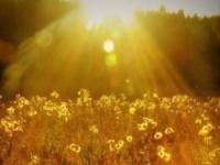 Лечебные свойства солнечного света