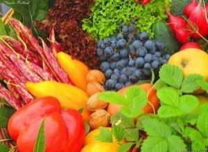 Основные пищевые источники важнейших микроэлементов